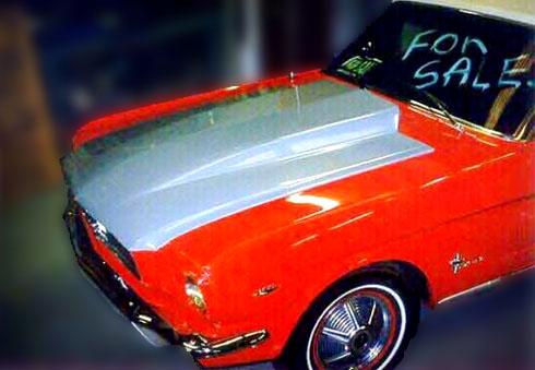 Mustang Image1